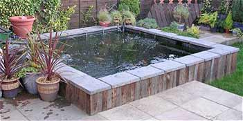 Fish pond design for Design agency pond